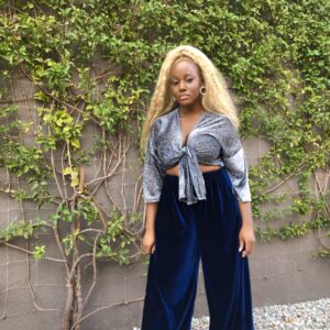 Blue Velour Wide Leg Pants